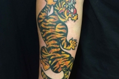American-traditional-style-tiger-tattoo