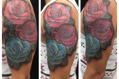 color-roses-half-sleeve