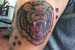 traditional-style-tattoo-sailor-jerry-tiger-head-tattoo