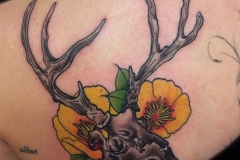 traditional-style-tattoo-of-skull-by-Roger-Sollis