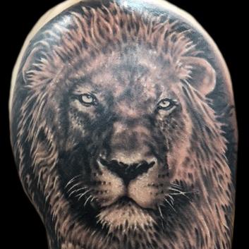 lion-portrait2